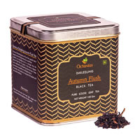 Octavius Darjeeling Autumn Flush Black Tea, Loose Whole Leaf 100 gm ...