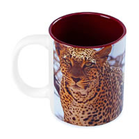 Hot Muggs Wild Focus - Don't Mess With Me Mug