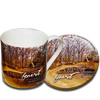 Hot Muggs Wild Focus Forests - Madhya Pradesh, Mug & Coaster - set of 4