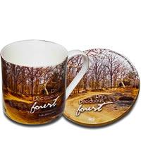 Hot Muggs Wild Focus Forests - Madhya Pradesh, Mug & Coaster - set of 4