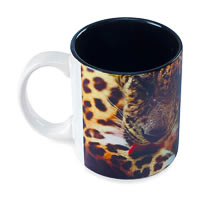 Hot Muggs Wild Focus - Break Time Mug