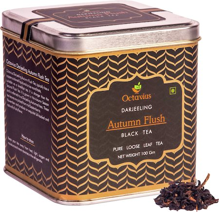 Octavius Darjeeling Autumn Flush Black Tea, Loose Whole Leaf 100 gm Premium Caddy