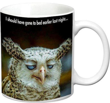 Prithish Gone To Bed Earlier Last Night White Mug